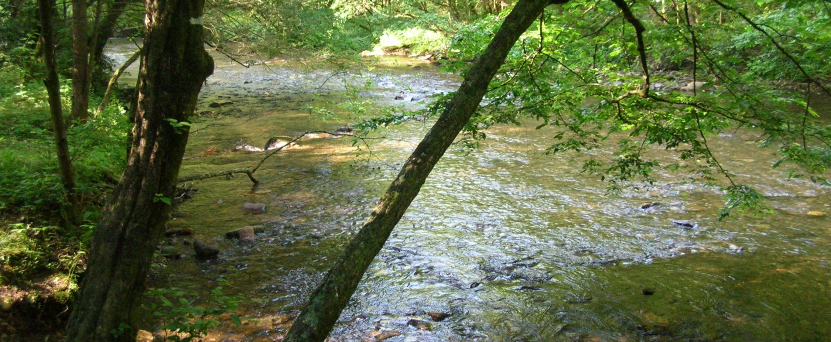 Tallulah River Near Garrett Branch